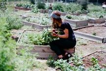 Urban Growing / Ideas and inspiration for growing and producing food at home