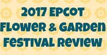 Epcot Flower & Garden Festival / All the tips you need to know to enjoy the Epcot International Flower & Garden Festival to the fullest: the gardens and topiary, the food, the drinks, reviews, special events, the fun! And of course, there are lots of great photos!