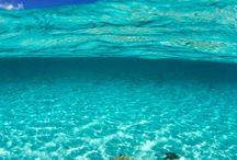 Swim Swim / Beach  fun