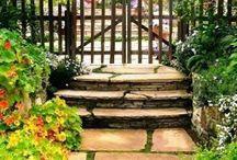 Garden / Ideas for garden  / by Joyce