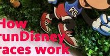 runDisney Tips / Everything runDisney | Tips and Guidelines | Costumes | In-depth looks at each marathon |