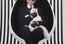 Karl Lagerfeld / Mon idole : créateur , photographe ........ il est devenu lui même une icône