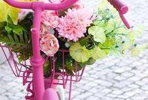 Flower bike / bicyclette nous t'aimons , nous te gardons en te fleurissant ...