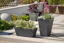 For the Home & Garden
