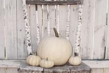 Halloween / by Lori Levoy