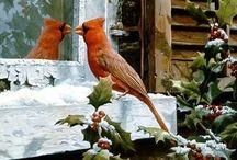 Winter/ Christmas Season