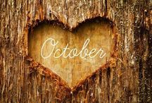 Autumn  Bliss / Oh sweet Autumn!  If only you would stay around a little bit longer..♥