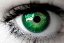 Everlasting Emerald