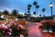 Disney Resorts / Cruise / by Hannah Houston