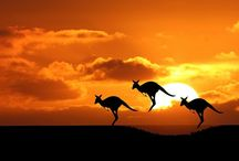 Australia & New Zealand / The land down under, where they speak with the most AWESOME accents!