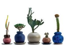 Ceramic: Pots for Plants