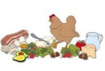 Ernährung lowcarb - Infos und mehr
