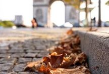 ❦Autumn in the city•*¨*•.¸¸♥