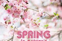 Spring AnMo / Tavasz évszak