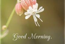 Good morning An Mo / Jó reggelt képek