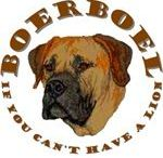 Boerboel AnMo / Boerboel