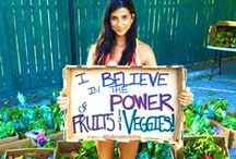 Raw Vegan Community / Here you are some of the most famous raw vegan web-sites, blogs, youtube channels, forums, people, raw food chefs, athletes, contest and so on!!
