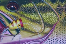 Smallmouth Bass Fish Art / Small mouth bass fish art and striped bass fish art collection.