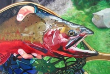 Rainbow Trout Fish Paintings / Rainbow trout fish collection available on our site.