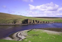 Shetland Islands / The Shetland Islands are the northernmost islands in Britain and are incredibly beautiful with very friendly people