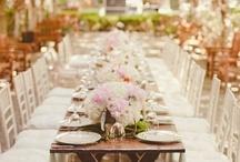 Dream Wedding / by Nikki Rushnok