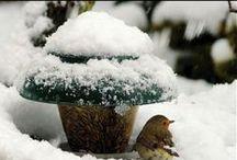 A tél szépségei