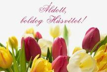 Húsvét / Húsvéti fotók az internetről gyűjtve...