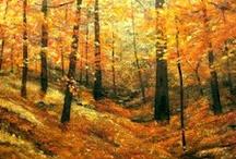 Fall Foliage / by Sharon Wagoner
