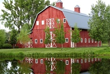Barns and Farm Houses / by Sharon Wagoner