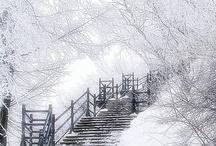Winter / by Sharon Wagoner