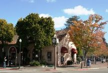 Mill Valley Guide / Places to visit in the beautiful city of Mill Valley, California.