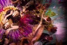 Baz Lurhman : Burlesque et Contrasté