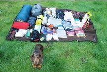 Dog Travel Checklists / Packing ideas for dog activities and road trips.