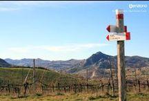 enziano's Hiking Tours