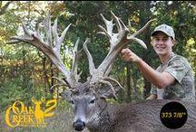 2015 Oak Creek 2 Harvest / Oak Creek 2 is producing some giants this time. #oakcreekwhitetailranch