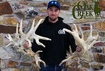 2016 Shed Hunting / The monster bucks of Oak Creek Whitetail Ranch have started to drop their antlers.