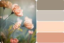 Painting and Color Schemes / by Karen Jackson