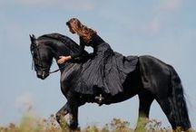 Women on horseback - Nő lóháton