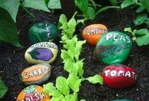 Gardening / Tips on gardening