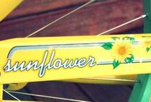 sun.bikes