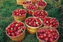 Nature : #Fruits Doux Good / #fruit #saison #nature