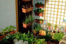 Square meter gardening