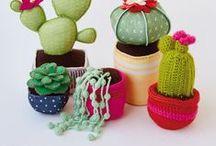 Suculentas & cactus / Ideas de cactus y suculentas inmortales :D