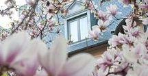 Spring at #renleparc / Renaissance Hotels - Renaissance Le Parc Trocadéro #renhotels