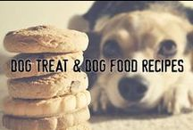 Dog Treat & Dog Food Recipes / We've scoured Pinterest for the best dog treat and dog food recipes around and pinned them here. Stay connected with Redbarn Pet Products on Facebook: www.facebook.com/redbarninc