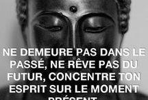 Bouddhas, bouddhas ! / Le Bouddha sous toutes ses formes, ses postures, et ses citations !