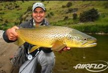 Trout rivers in the UK / Some beautiful images from some of the top trout fishing rivers in the UK
