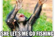Funny fishing memes / Funny viral fishing memes from the internet and social media pages. www.fishtec.co.uk