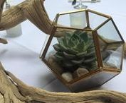 Rental Items Love In Bloom / Vases, candle holders, lanterns, etc available for rent with floral