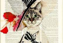 Cat - Macska minden mennyiségben